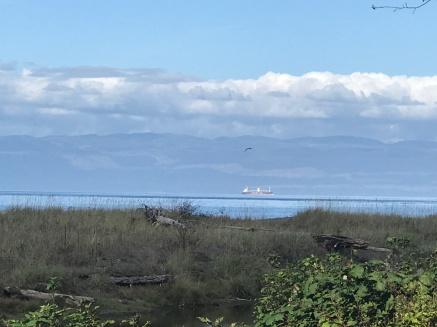 Callum Bay